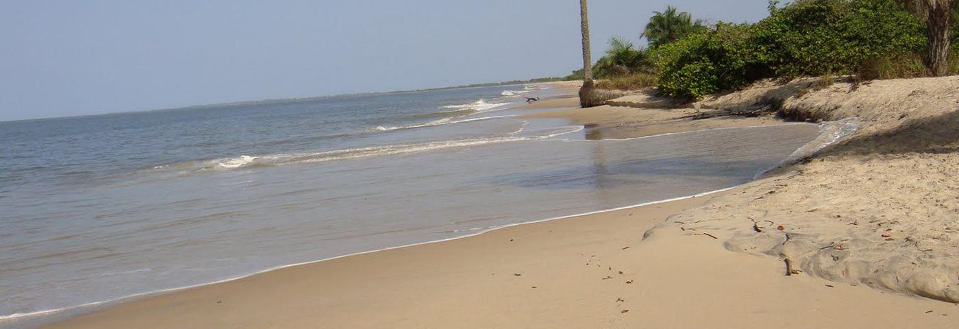 Logotipo Nacional de Turismo da Guiné Bissau